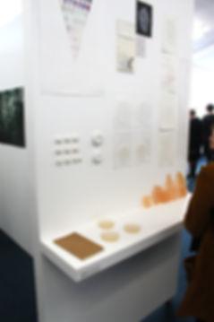 Art instillation at Massey University's Exopsure exhibition 2011