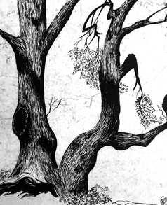 *Tree