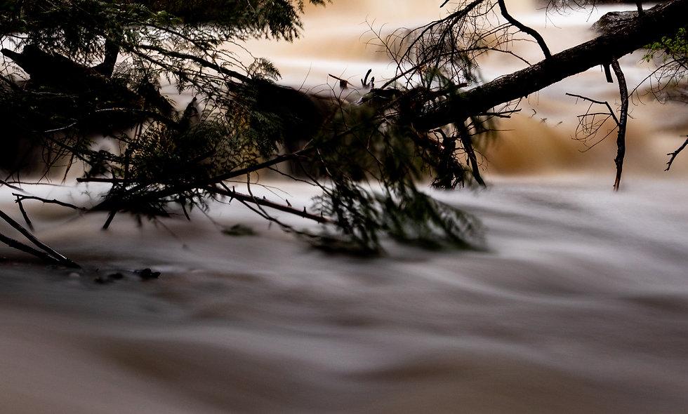 Mill Creek Fall - portrait
