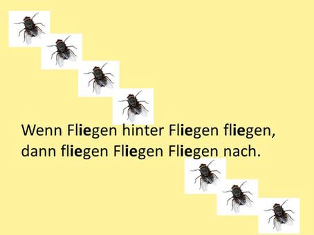 ドイツ語の早口言葉 Fliegen