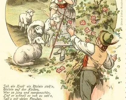 『野ばら(Heidenröslein)』の解説