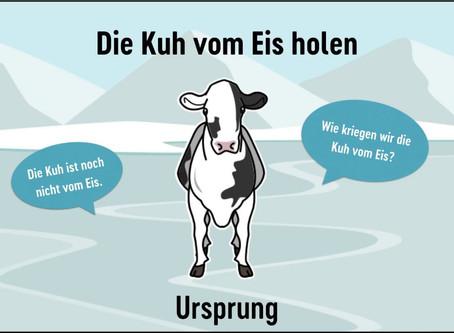 die Kuh vom Eis holen 牛を氷から連れ出す?