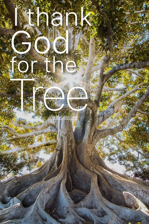 I Thank God For The Tree