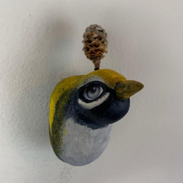 WOODLAND BIRDY