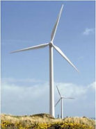 bearings for wind turbines