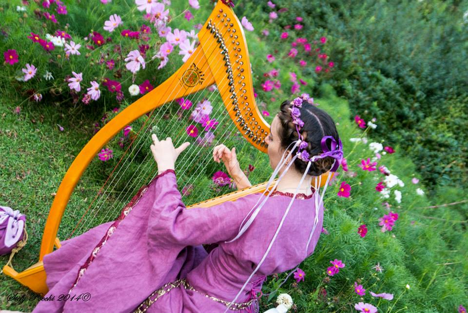 Velvet Fairy Harp