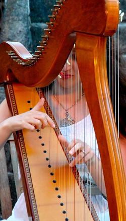 Harp Festival Baden