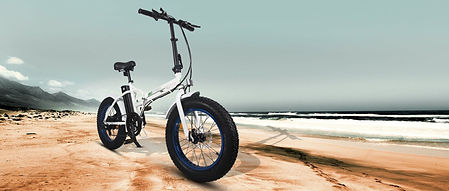 Fat Tire Fodable- Ecotric