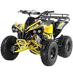 Coolster ATVs/Quads 110cc, 125cc, 150cc, 200cc