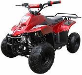 ATV 110cc quads