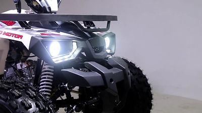 Raptor 200.jpg