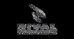 Rival Motorsport Logo_edited.png