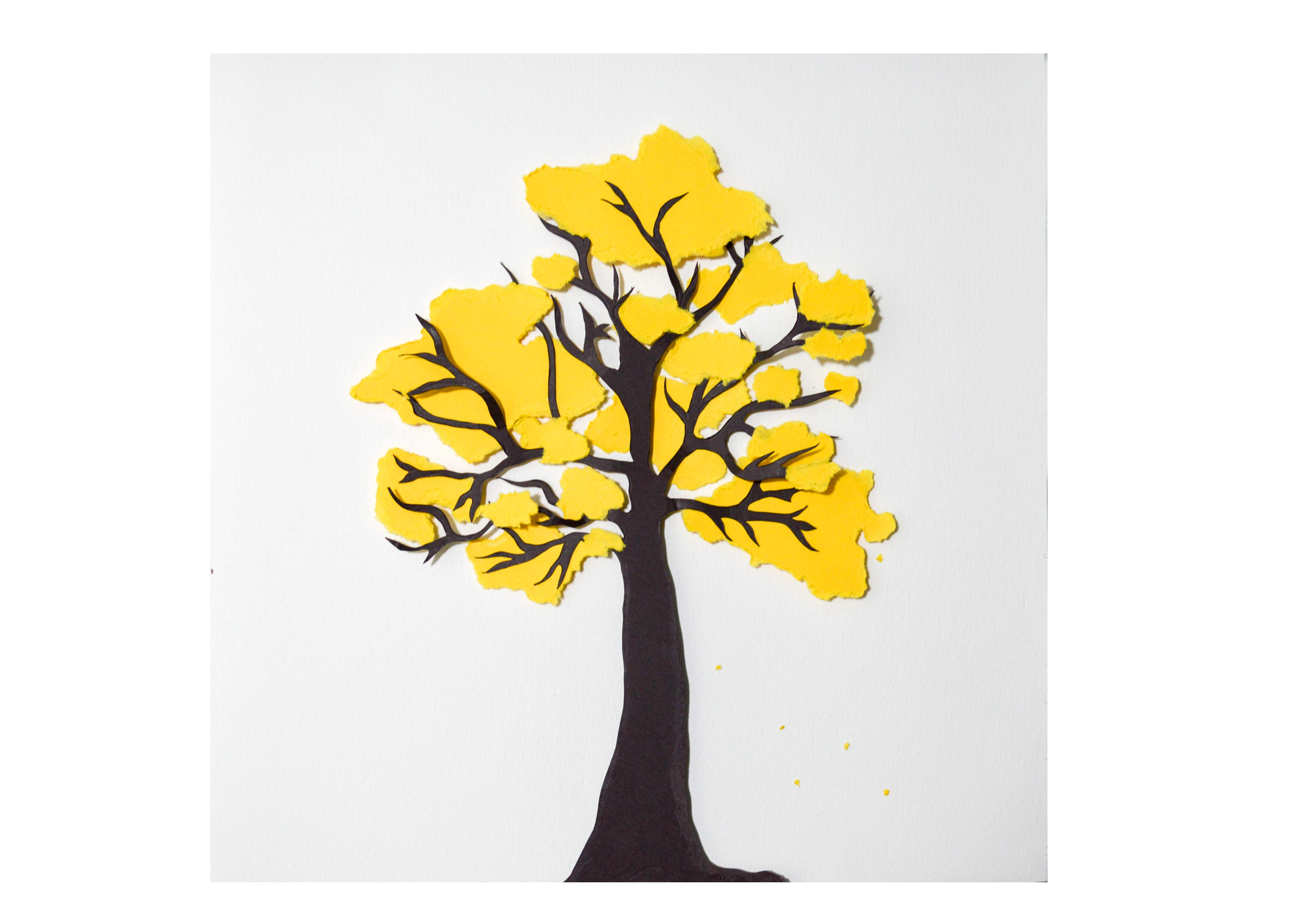 ipê-amarelo-02