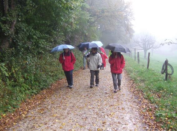 Herbstwanderung_2010_3.jpg