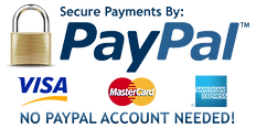 kisspng-payment-gateway-paypal-e-commerc