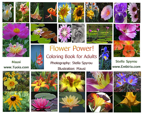 "Adult ""Flower Power"" Coloring Book"
