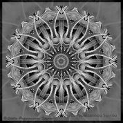 Wheel of Thorns Print