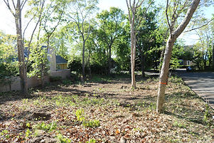 land clearing service long island at the top tree service corp