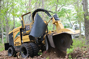 stump grinding service long island at the top tree service corp