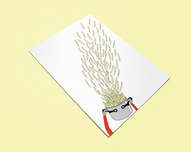 THE WORLD OF PASTA postcards