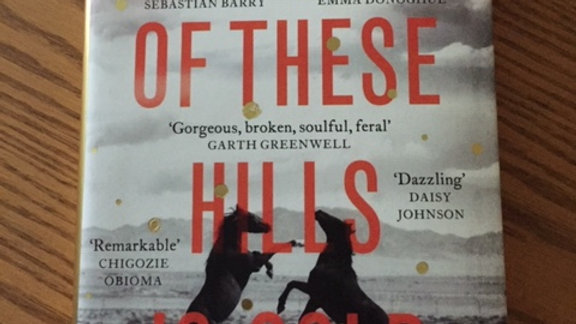 HOW MUCH OF THESE HILLS IS GOLD -- C Pam Zhang