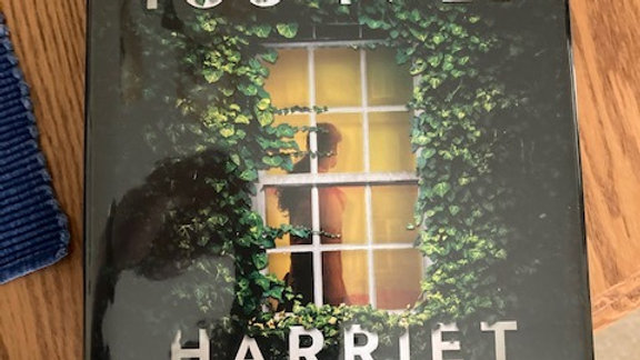 THE LIES YOU TOLD - Harriet Tyce