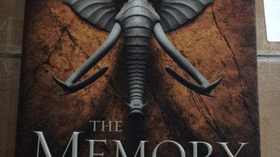 THE MEMORY OF SOULS - Jenn Lyons