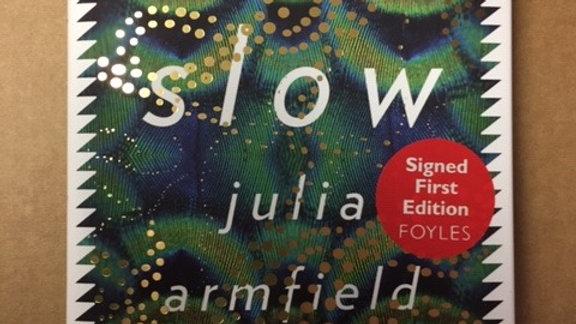 SALT SLOW -- JULIA ARMFIELD  UK