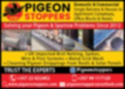 PIGEON STOPPERS 1.8 SEP19-01.jpg