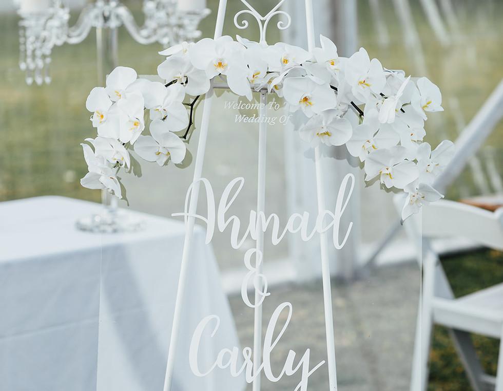 Ahmad&Carly-Wedding-HighRes-0514.jpg