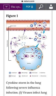 COVID-19: Cytokine Storms