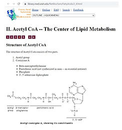 ABC's of Vitamin Deficiencies: B5 or Pantothenic Acid Deficiency