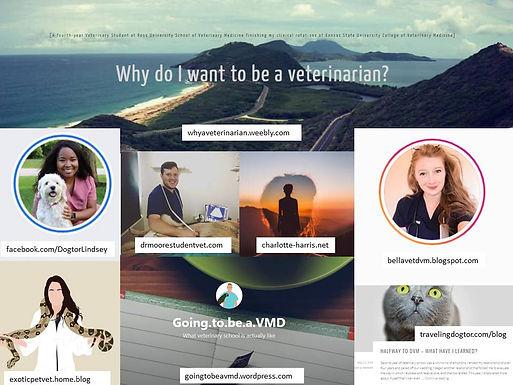 Veterinary Student Blogs