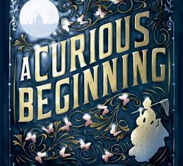 Review of A Curious Beginning by Deanna Raybourn