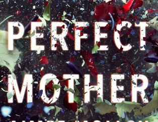 Review of The Perfect Mother by Aimee Molloy