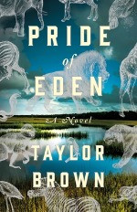 Six of My Pandemic-Era Book Buys