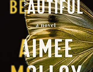 Review of Goodnight Beautiful by Aimee Molloy