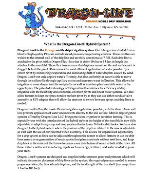 What is dragon-Line Thumbnail website.pn