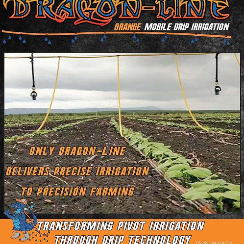 Dragon-Line Booklet (Packs of #25)