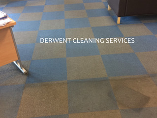Office carpet cleaning - everything you need to know