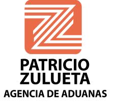 patricio zulueta.png