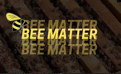 Bee Matter intro pic.JPG