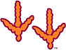 hokie feet 2.png