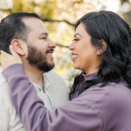 Fabyan Forest Preserve Spring Engagement Session| Alex and Abe