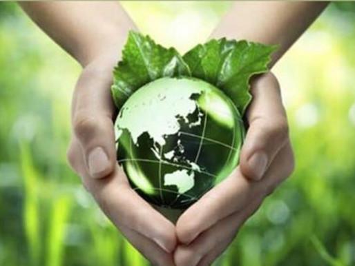Παγκόσμια Ημέρα Περιβάλλοντος   - Χρέος μας η ενίσχυση οικολογικής συνείδησης