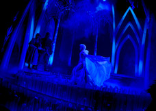 Frozen Celebration - Walt Disney Studios