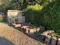 TCL green house garden.JPG