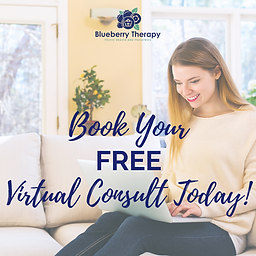 Free Virtual Consult Ad.png