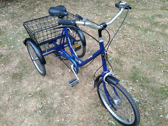 Look at our Adult Tricycle !!