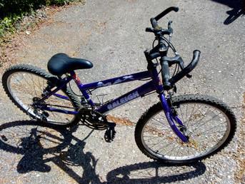 Three new bikes !